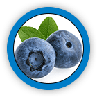 Bilberry Fruit Extract and Vitamin A