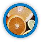 Citrus Bioflavanoids